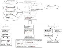 Hypothyroidism Pathophysiology Flow Chart Graves Disease Pathophysiology Google Search Thyroid