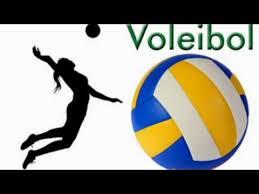 Resultado de imagen de voleibol animado