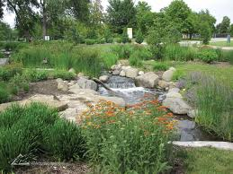bog and aquatic plants in the stream and waterfall enhance the visitor s experience to the botanical garden