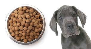 Great Dane Food Chart Best Food For A Great Dane Puppy Help Him Grow Big And Strong
