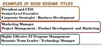 what is a resume title what is a good title for a resume a good example of a resume