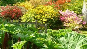 gardens how hill trust