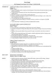 Application Consultant Sample Resume Applications Consultant Resume Samples Velvet Jobs 13