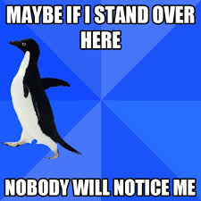 Socially Awkward Penguin meme funny | Why Are You Stupid? via Relatably.com