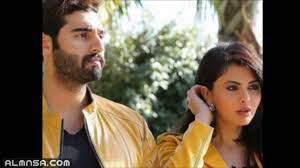 من هو فيصل الفيصل زوج مريم حسين – المنصة