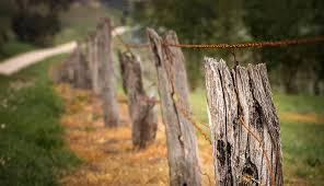 Barbed wire fence cattle Gate Hobby Farms Safely Take Down Barbedwire Fence Hobby Farms