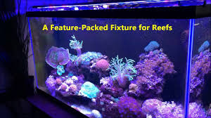 aquatic life edge led fixture reef edition
