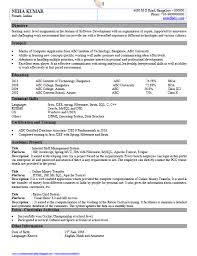 download resume format here resume samples for software engineers