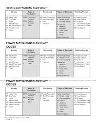 Private Duty Nursing Flow Chart Idaho Download Printable