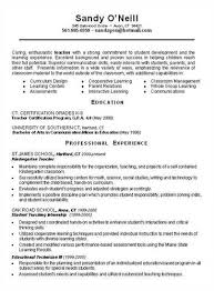 Good Luck With The Foreign Language Teacher Resume Sample