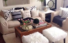 Living Room Decor Ideas For Apartments Enchanting Apartment Bedroom Decorating Ideas For College Students Living Room