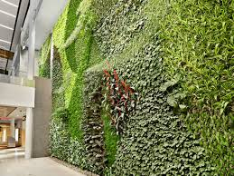 the curs living wall green over
