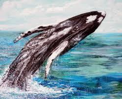 sealife in dana point harbor paintings by lieschen rypel