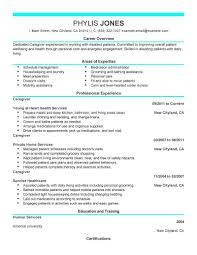 sample resume for it professional experienced professional sample resume for it professional experienced resume samples sample resume examples sample resume resume format