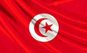 تونس: مقتل 4 جنود بانفجار لغم بالقصرين قرب الحدود مع الجزائر – موقع قناة  المنار – لبنان