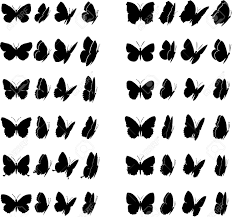 Twelve Butterflies Collection Each Different In Four Various
