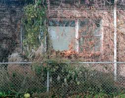 Julie Calcagno — From the series, Home: In Chicago © 2015, Julie...