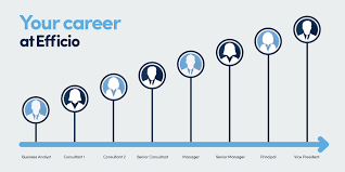 build your career efficio a typical career path from business analyst to vice president might look like this