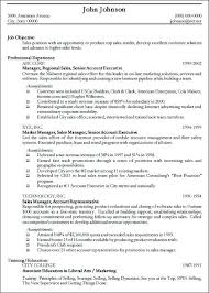 Professional Resume Objective Professional Resumes Format