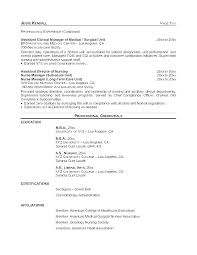 12 13 Example Of Curriculum Vitae For Nurses Lasweetvida Com