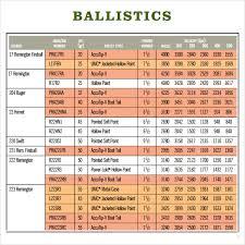 20 Gauge Ballistics Chart Dope Chart Template Www Bedowntowndaytona Com
