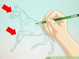 image led draw a realistic looking horse step 4