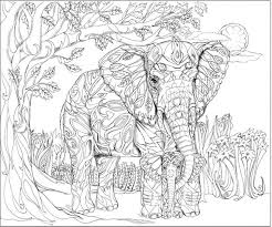 Small Picture 198 best Elephant Colouring Pages images on Pinterest Adult
