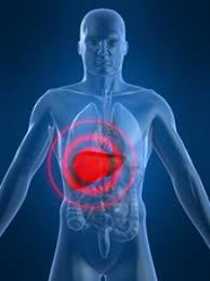 alimente regenerare ficat
