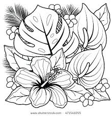 tropical coloring pages flower book flowers plus plants and hibiscus printable tropical coloring pages flower book flowers plus plants and hibiscus