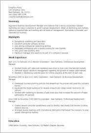 Business Development Manager CV       Velvet Jobs