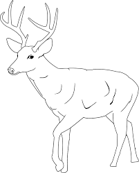 Small Picture Coloring Pages Animals Deer Coloring Pages For Kids Deer