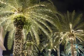 Tree Lighting Jacksonville Jacksonville Light Boat Parade 2019 And So Much More