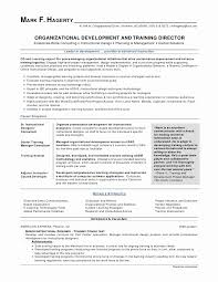 Federal Government Resume Examples Best Microsoft Word Resume Sample Unique Best Federal Government Resume