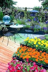 rainbow garden mixture of hot to cool colors in garden path and plantings of flowers annuals