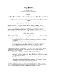 Resume Professional Summary Examples Customer Service customer service skills summary Baskanidaico 7