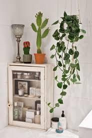Best 25+ Bathroom plants ideas on Pinterest | Best bathroom plants, Plants  in bathroom and Plants for bathroom