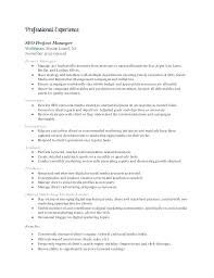 Sales Marketing Resume Fascinating Digital Resume Example Socialumco