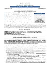 Sample Programmer Resume programmer resume format and examples Intoanysearchco 54