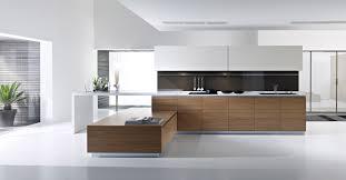 Of White Kitchens Kitchen Contemporary White Kitchens White Kitchen Designs Modern