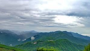 从海拔认识台湾茶。什么是台湾高山茶、高冷茶。 - 知乎