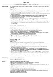 Director Resume Sample Activity Director Resume Samples Velvet Jobs 7