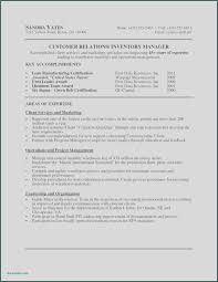 Digital Project Manager Resume Examples Luxury Photos Digital