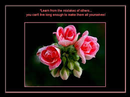 Beautiful Quotes About Life And Flowers Best Of Beautiful Quotes For Life With Beautiful Flowers The Fun Learning