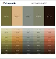 Yellow Metal – Brandy – Stack – Bandicoot – Coffee Bean Color ...