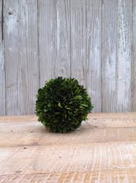 Decorative Boxwood Balls Preserved Boxwood Ball 100 Home Decorative Accents HOME 73