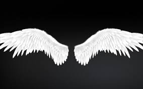 angel wings type 2 level 2 3d model low poly rigged animated max obj