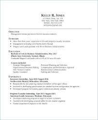 Business Resume Template Word Best Insurance Underwriter Resume Sample Resume Business Administration