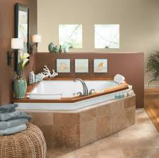 Traditional Bathroom Decor Bathroom Design Ideas Transitional Bathroom Traditional White