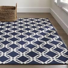stylish teal area rug