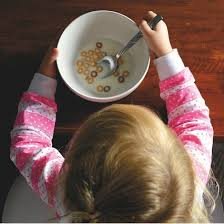 Защиты кандидатских и докторских диссертаций по педагогике в марте  Склонность к эмоциональному перееданию или недоеданию не наследуется